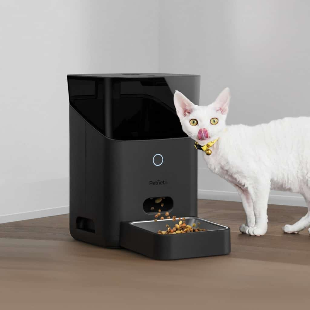 los mejores comederos inteligentes para gatos